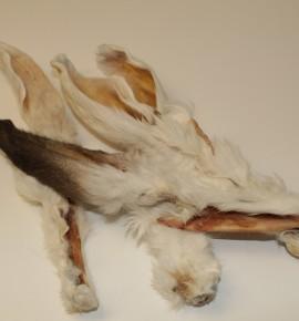 Уши кролика с шерстью